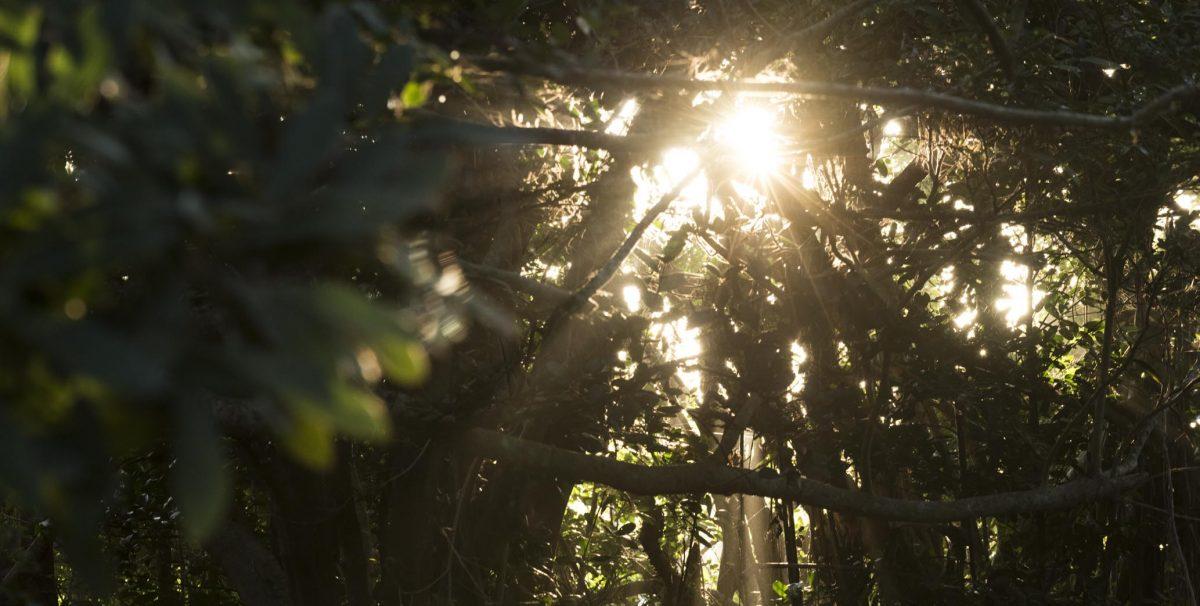 久高島の朝日