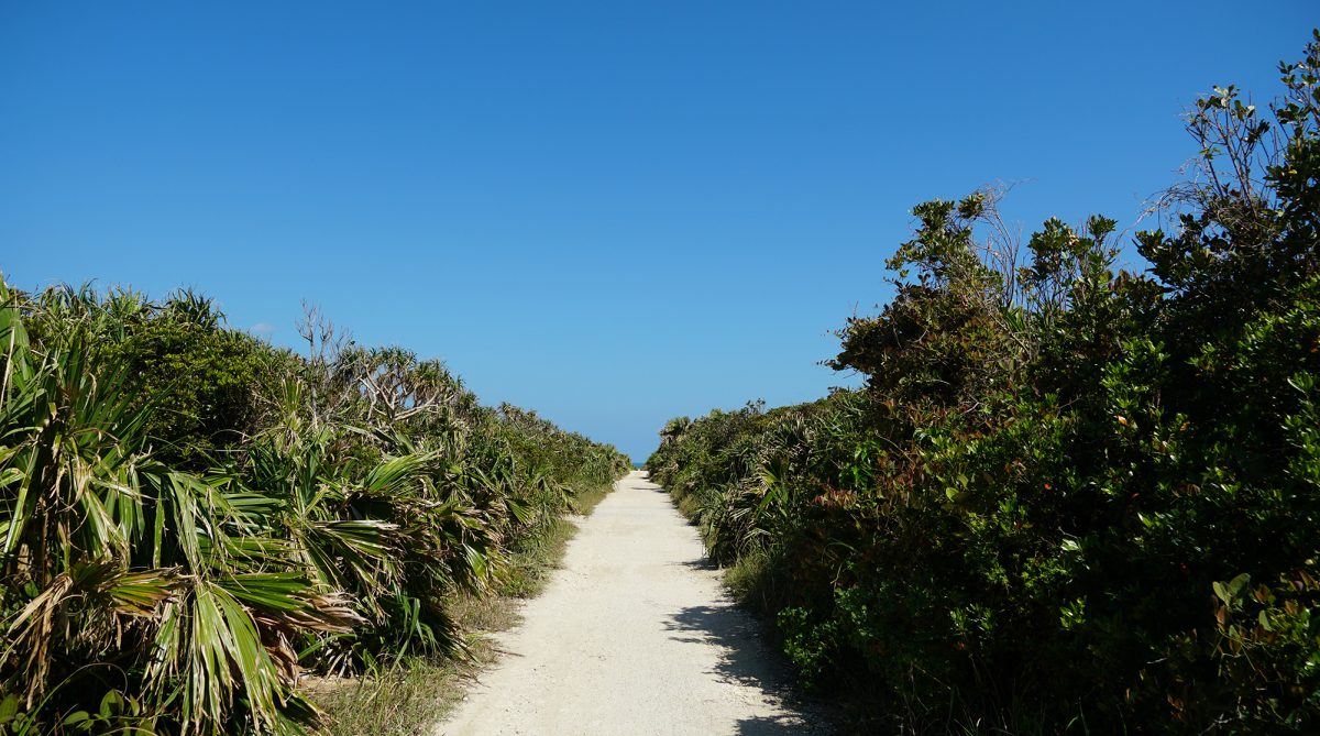 ハビャーン(カベール岬)への道
